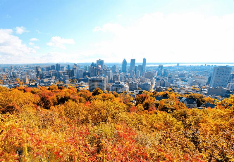 Mount Royal Montreal Fall 2