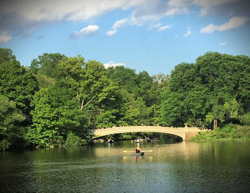 Central Park Summerg