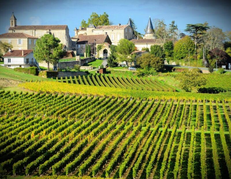 Bordeaux Vineyards France