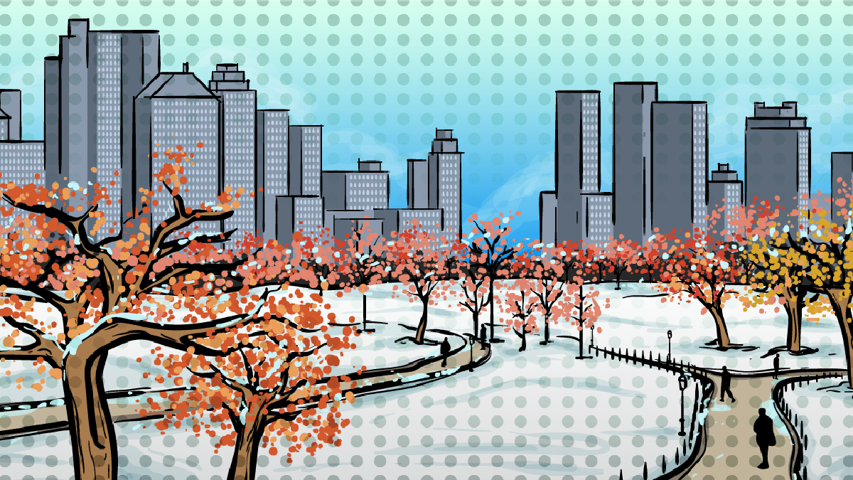 best-things-to-do-in-nyc-in-winter-animated -central park NYC covered in snow